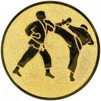 küzdősport
